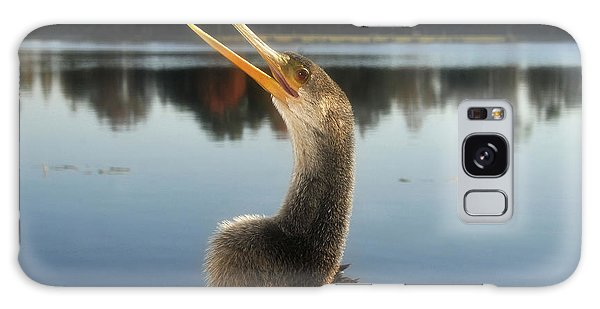The Great Golden Crested Anhinga Galaxy Case