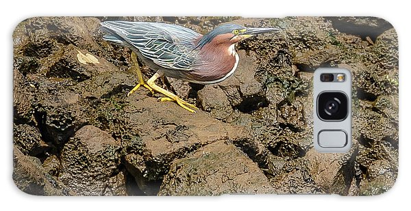 The Green Heron Galaxy Case by Jerry Cahill