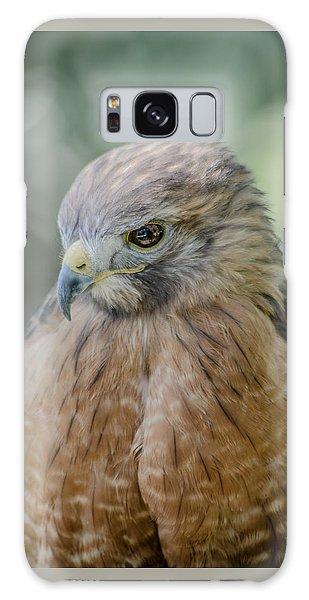The Hawk Galaxy Case by David Collins