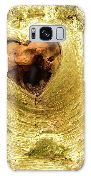 The Heart Of The Tree Galaxy Case