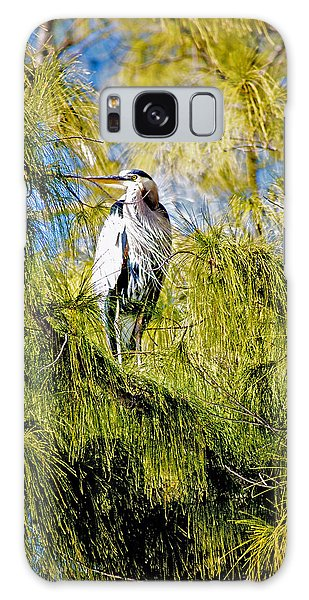 The Heron's Whiskers Galaxy Case