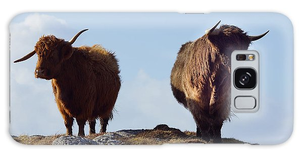 Glen Galaxy Case - The Highland Cows by Smart Aviation