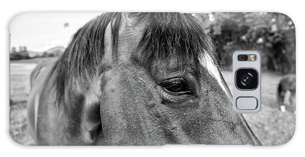 the Horses of Blue Ridge 1 Galaxy Case