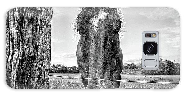 the Horses of Blue Ridge 4 Galaxy Case