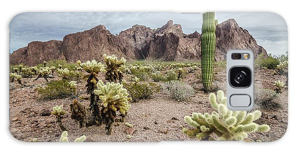 The King Of Arizona National Wildlife Refuge Galaxy Case