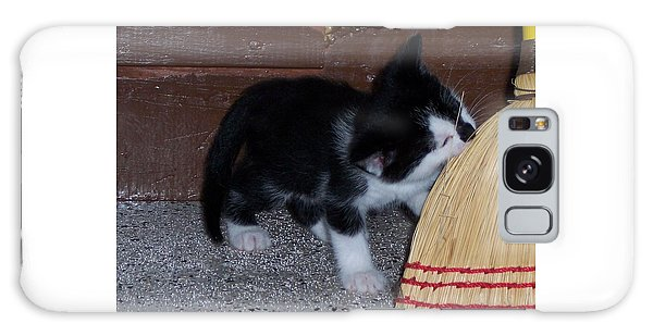 The Kitten And The Broom Galaxy Case
