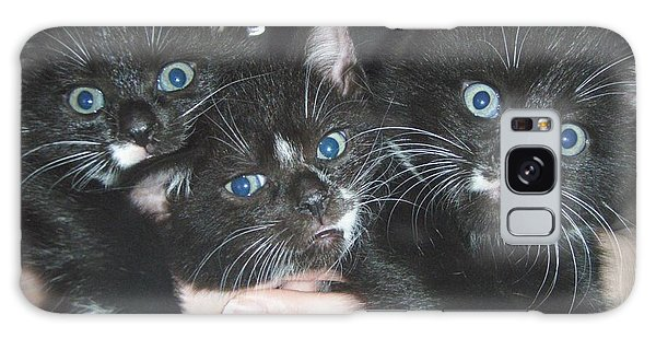 The Kittidiots Galaxy Case by Kristine Nora