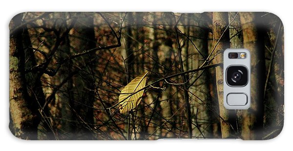 The Last Leaf Galaxy Case by Bruce Patrick Smith