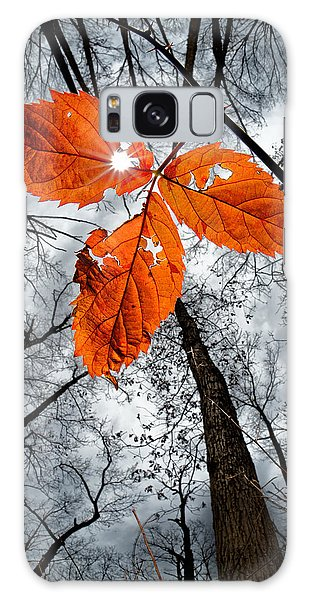The Last Leaf Of November Galaxy Case