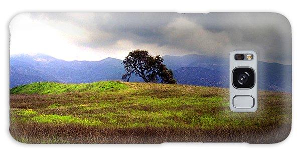 The Last Oak Galaxy Case