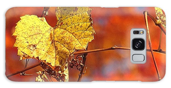 The Last Yellow Leaves Galaxy Case