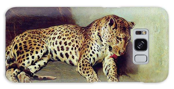 The Leopard Galaxy Case