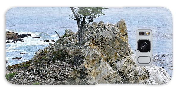 The Lone Cypress Galaxy Case