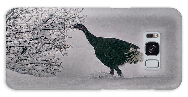 The Lone Turkey Galaxy Case