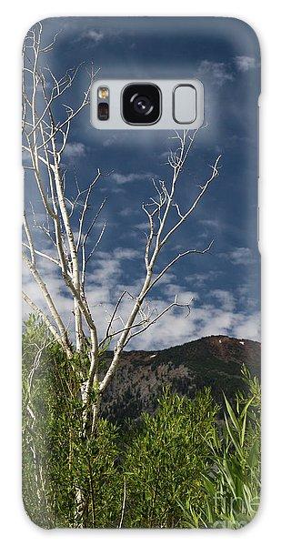 The Lonely Aspen  Galaxy Case