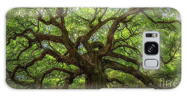 Limb Galaxy Case - The Magical Angel Oak Tree Panorama  by Michael Ver Sprill