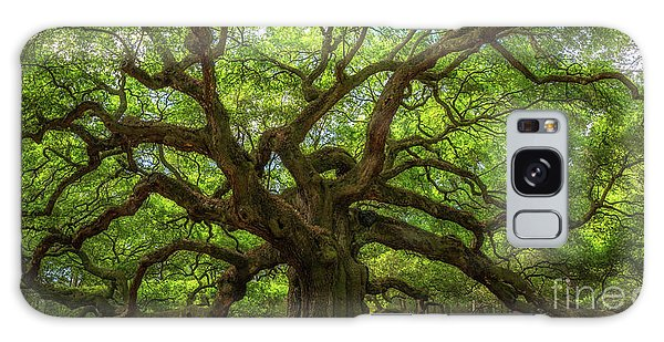 The Magical Angel Oak Tree Panorama  Galaxy Case