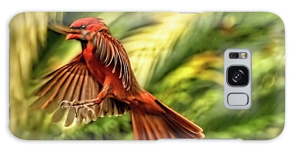 The Male Cardinal Approaches Galaxy Case