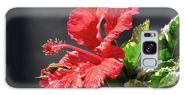 The Mallow Hibiscus Galaxy Case