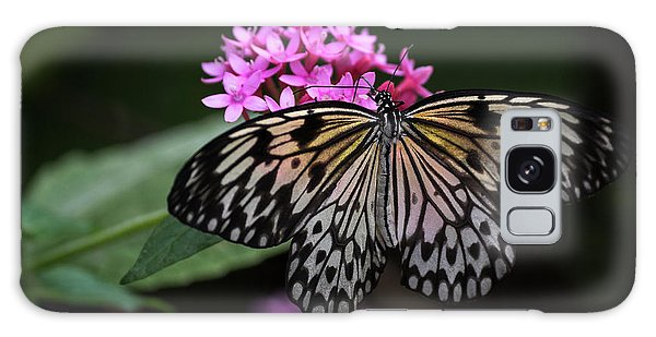 Galaxy Case featuring the photograph The Master Calls A Butterfly by Cindy Lark Hartman