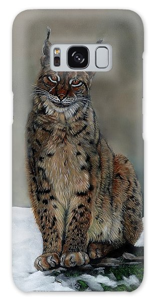 The Missing Lynx Galaxy Case