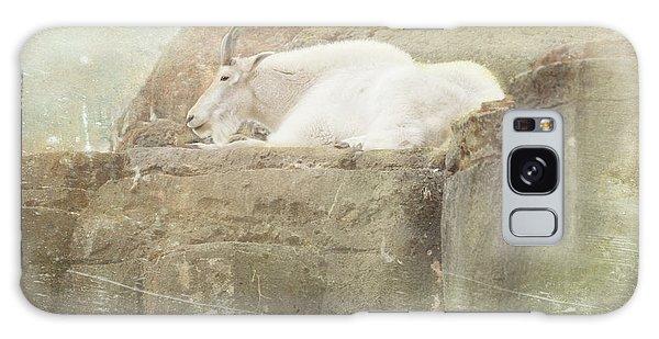 The Mountain Goat Galaxy Case