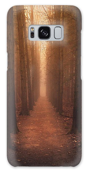 The Narrow Path Galaxy Case
