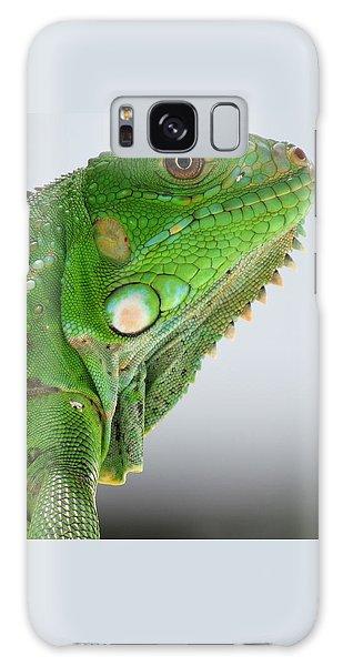 The Omnivorous Lizard Galaxy Case