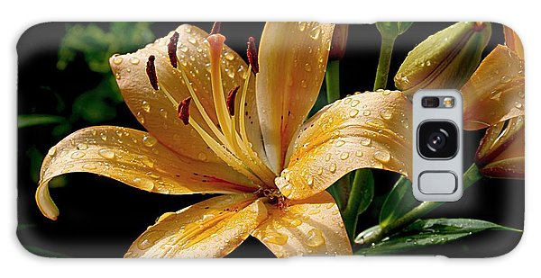 The Orange Lily Galaxy Case by Karen McKenzie McAdoo