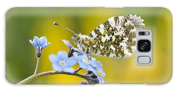 Mottled Galaxy Case - The Orange Tip Butterfly by Tim Gainey