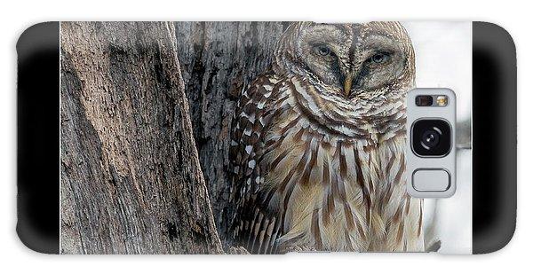 Mottled Galaxy Case - The Owl by Betsy Knapp