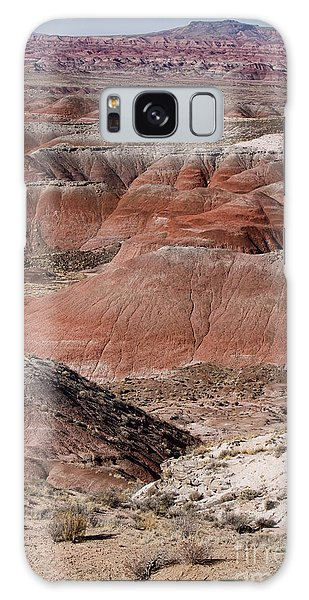 The Painted Desert  8024 Galaxy Case