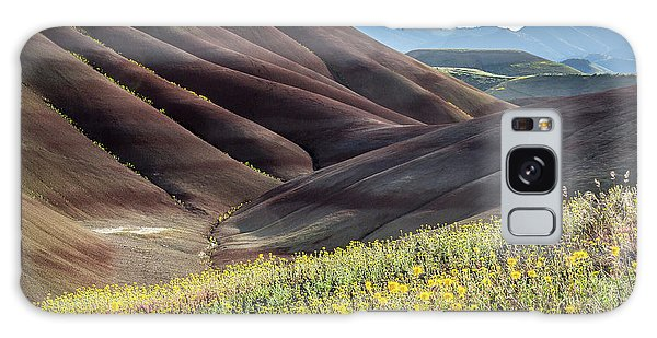 The Painted Hills In Bloom Galaxy Case