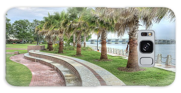 The Palms Of Water Front Park Galaxy Case