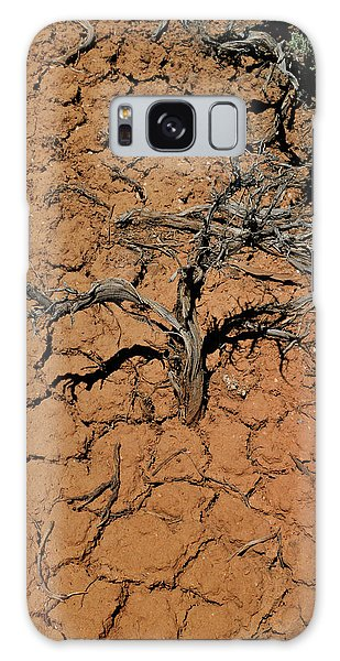 The Parched Earth Galaxy Case