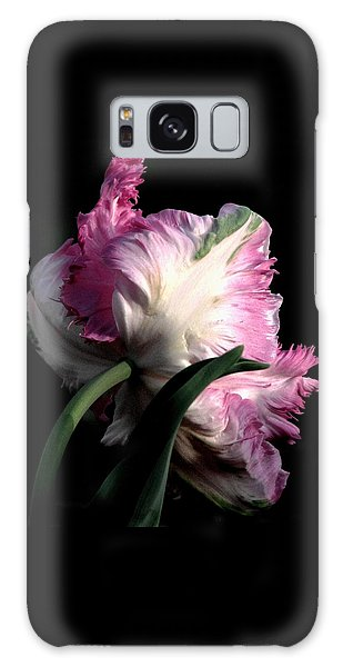 The Parrot Tulip Queen Of Spring Galaxy Case