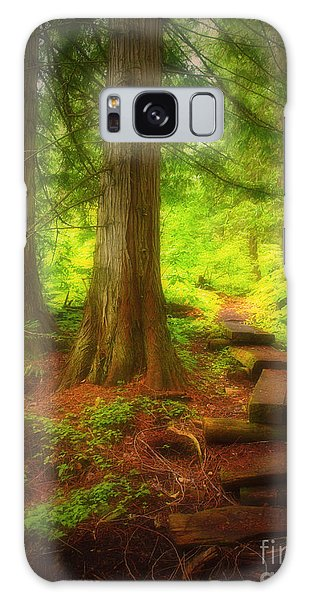 The Path Through The Forest Galaxy Case