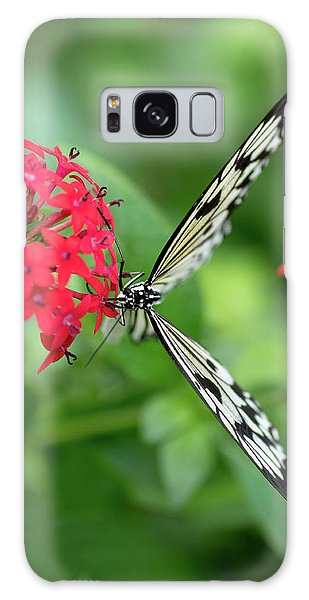 The Perfect Butterfly Land Galaxy Case