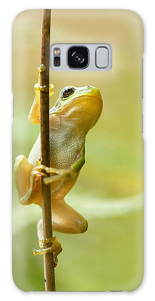 The Pole Dancer - Climbing Tree Frog  Galaxy Case