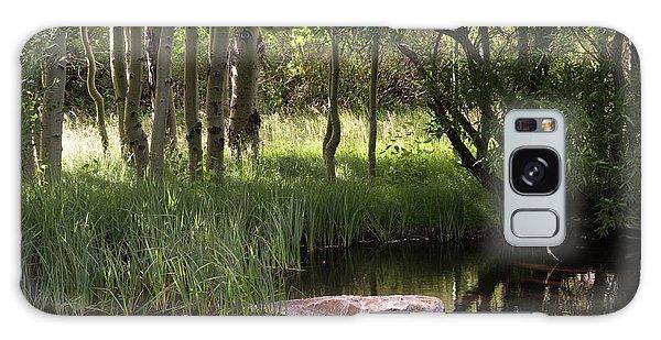 The Pond  Galaxy Case