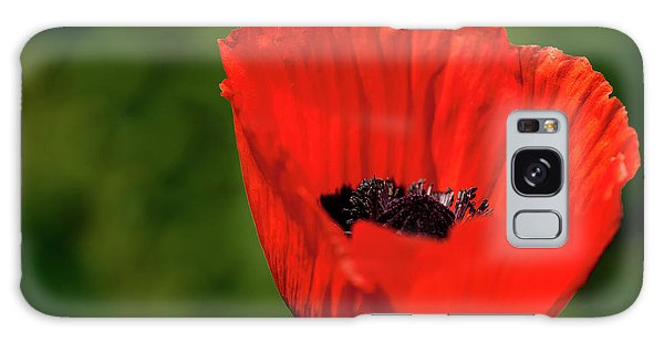 The Poppy Next Door Galaxy Case