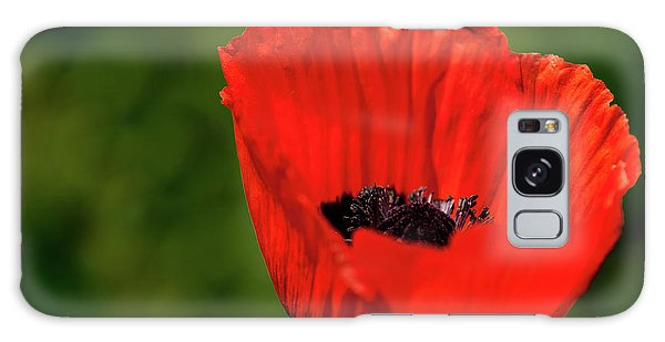 The Poppy Next Door Galaxy Case by Onyonet  Photo Studios