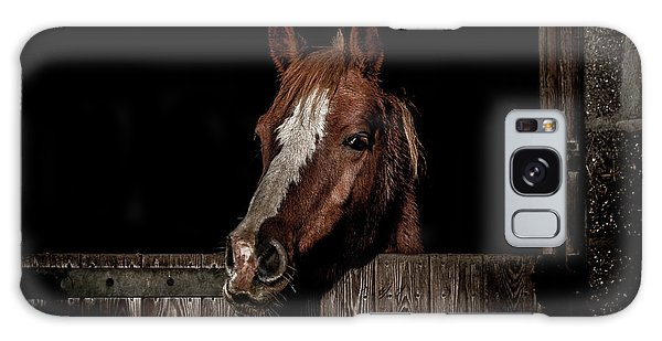 Equine Galaxy Case - The Poser by Paul Neville