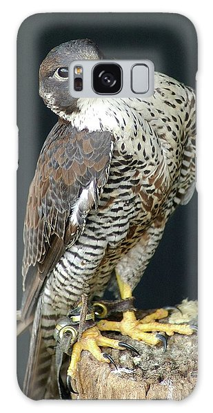 The Proud Falcon Galaxy Case