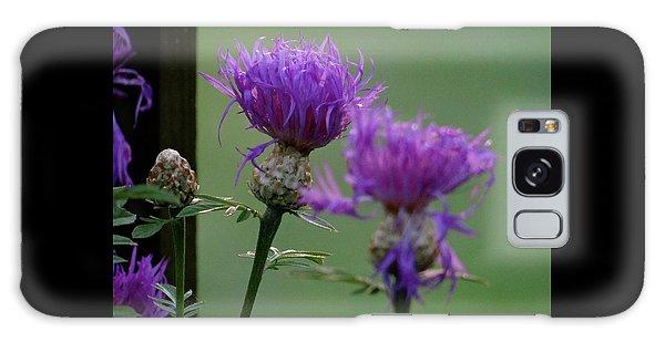 The Purple Bloom Galaxy Case