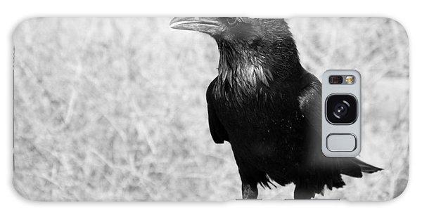 The Raven Galaxy Case