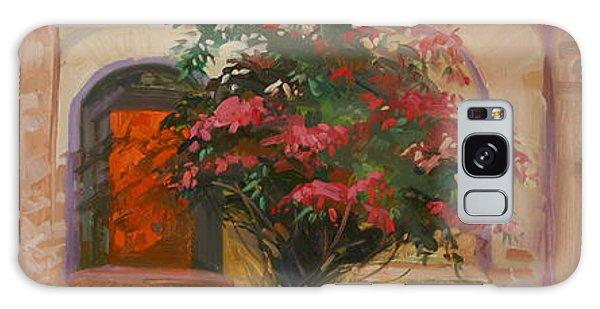 Betty Billups Galaxy Case - The Red Door - Catalina Island by Betty Jean Billups