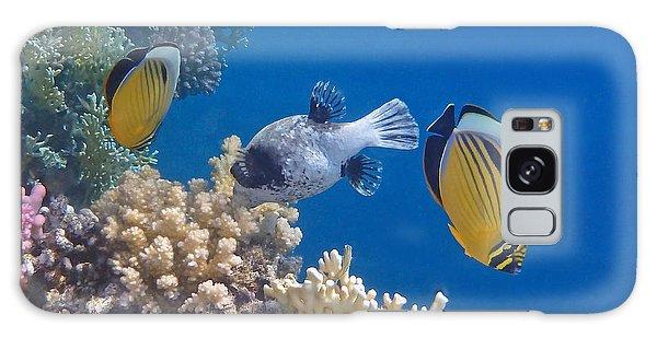 The Red Sea Underwater World Galaxy Case