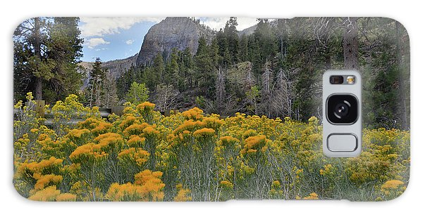 The Road To Mt. Charleston Natural Area Galaxy Case