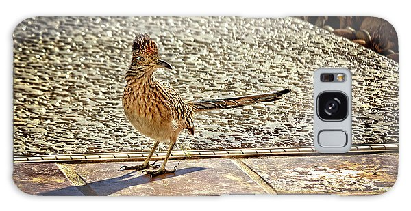 Greater Roadrunner Galaxy Case - The Roadrunner by Robert Bales